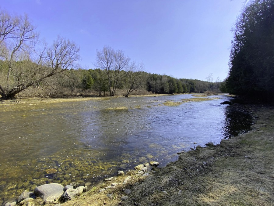 River Shoreline