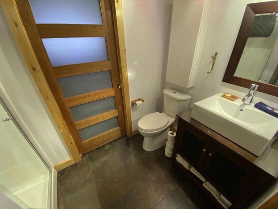 Bathroom 2 - Lower Level
