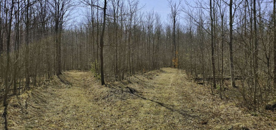 Trails on Property